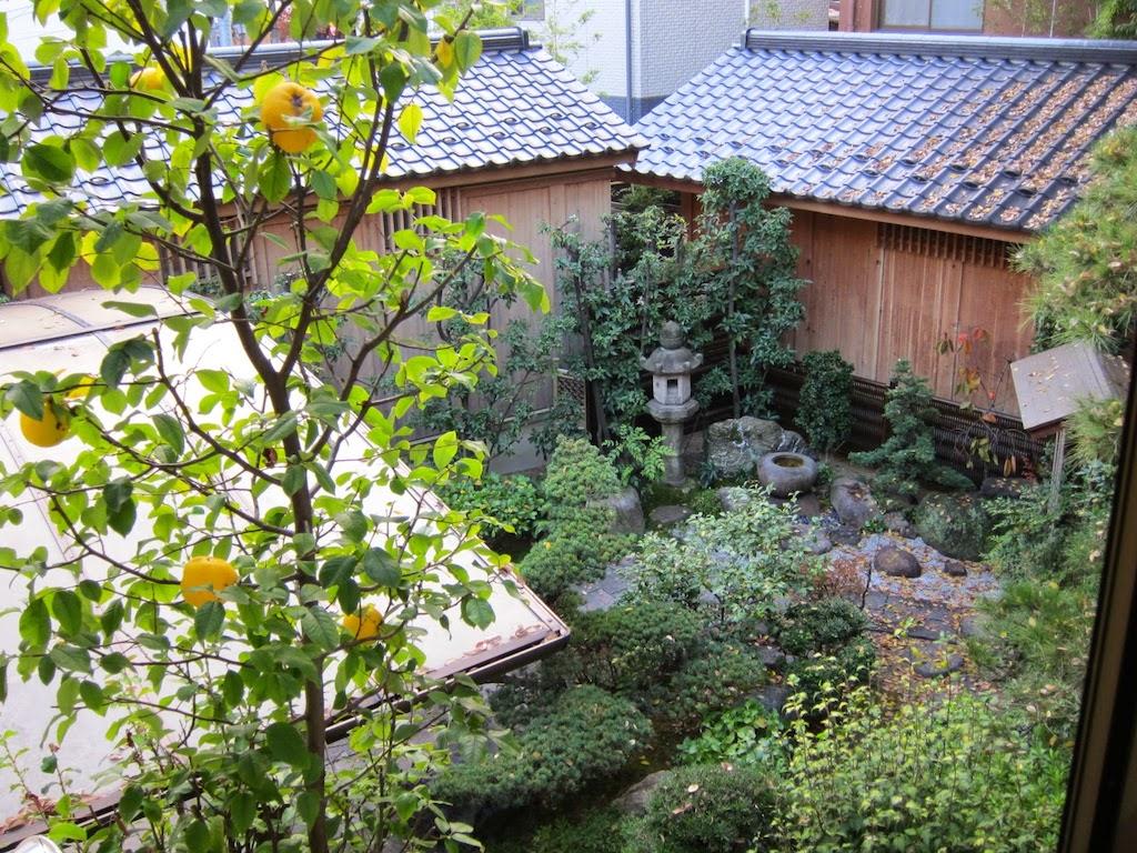 【楓】窓から庭